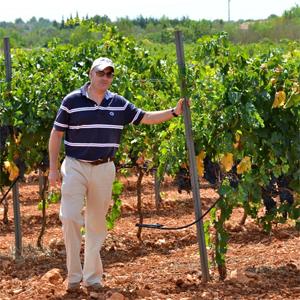 Jose Francisco Llompart at a vineyard.