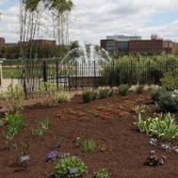 The Arboretum on the University Park campus