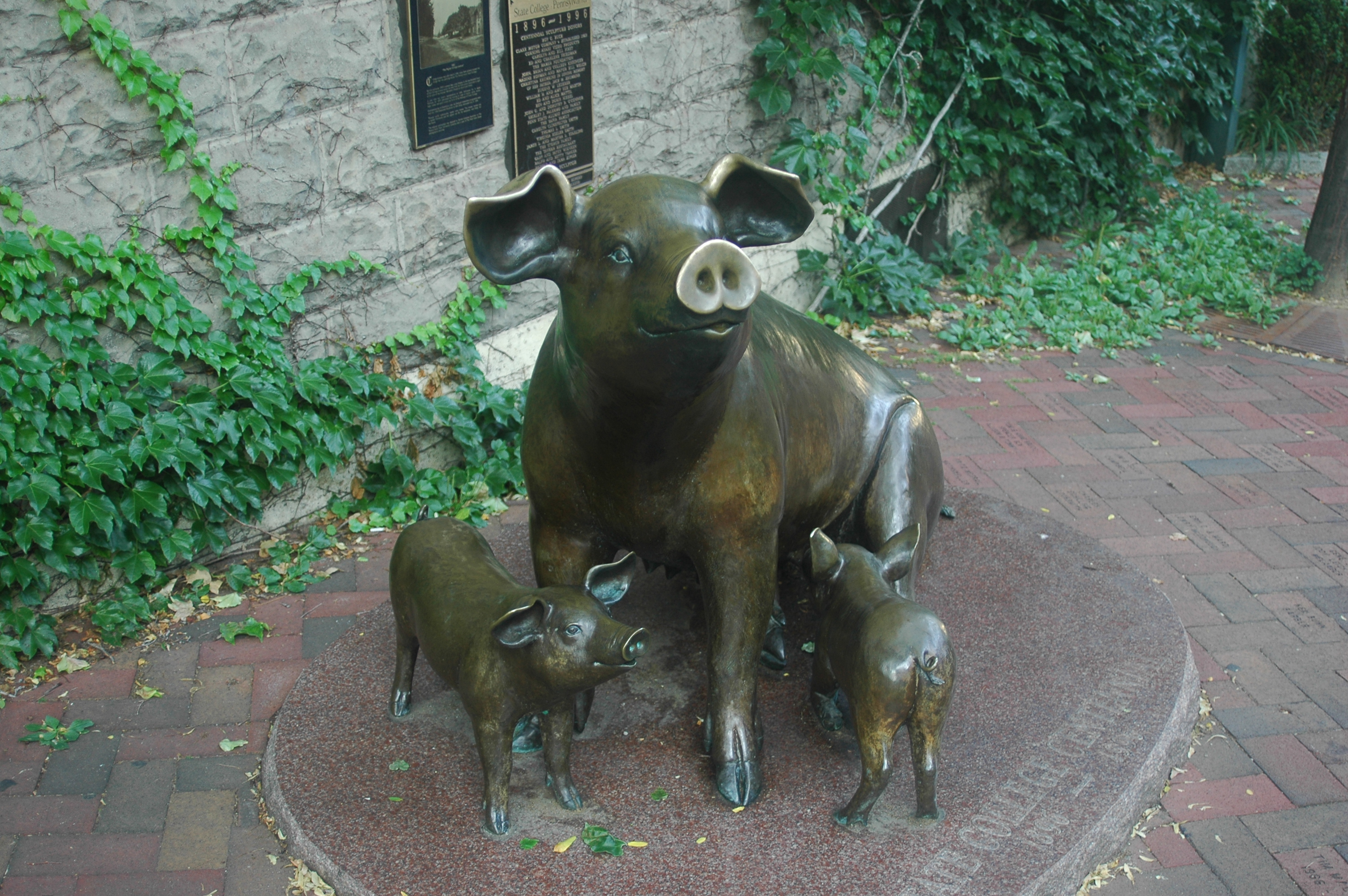 Centennial pigs in State College, Pennsylvania